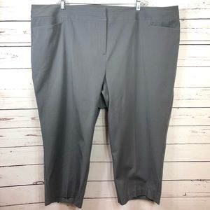 LAND BRYANT Gray Capri Pants Size 28
